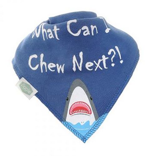 What Can I Chew Next? Bandana Bib